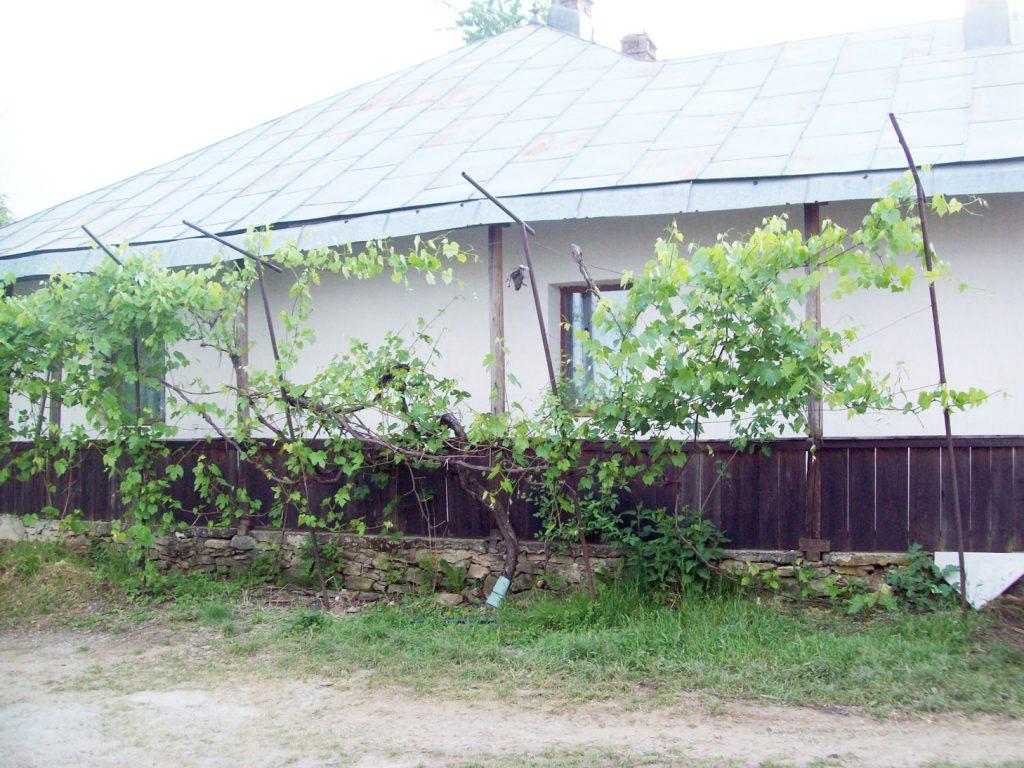 Bauernhof-(2)